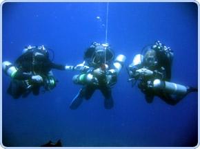 Tec Dive Gear